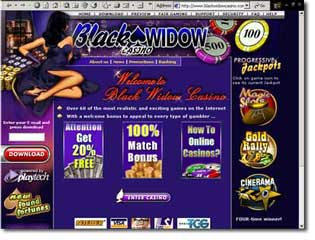 Black Widow Casino